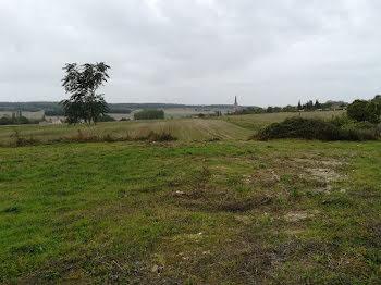 terrain à Crissay-sur-Manse (37)