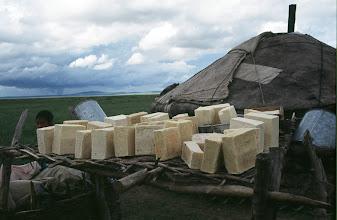 Photo: 03520 ケシクテン郊外/ゲル/乳製品を干す