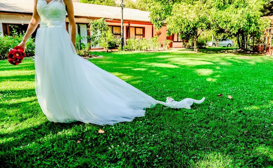 Fotógrafo de bodas Rosa Navarrete (hazfotografia). Foto del 06.04.2015