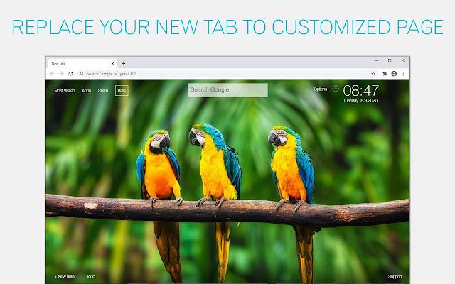 Parrot Wallpaper Parrots NewTab freeaddon.com