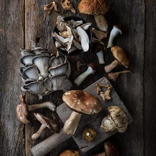 Chicken With Wild Mushrooms.