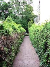 Photo: http://friedhof-bremen.jimdo.com/