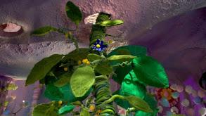 The Giant Plant thumbnail