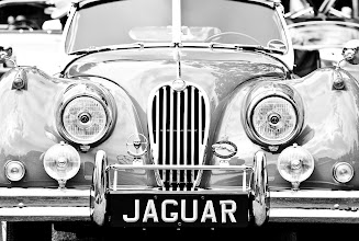 Photo: Jaguar…at last something beautiful you can truly own -- Hillsborough, CA