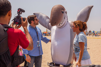 Photo: Dusky being interviewed by Discovery Channel at FinFest. Photo credit: Chris Panagakis