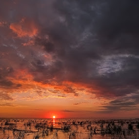Sunrise in Sulina, Danube&Black Sea by Tomita Savastre - Landscapes Waterscapes ( clouds, sky, sunrise, sun, colours )