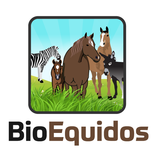 BioEquidos - Manage your Equine livestock.