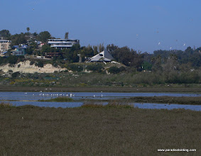 Photo: One of the coastal lagoons of San Diego County