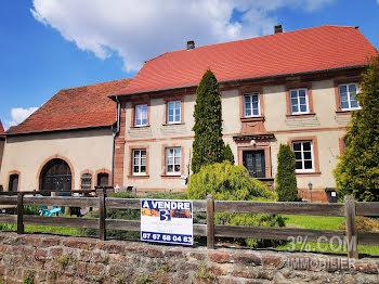 locaux professionels à Goetzenbruck (57)
