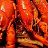 水貨烤魚火鍋(中和店)