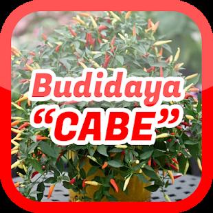Cara Budidaya Cabe Sukses - náhled