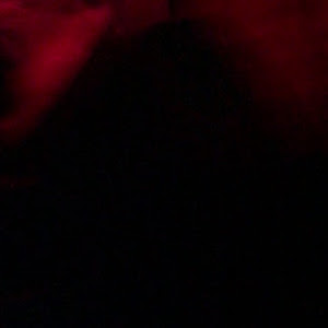 タント L375S Gスペシャルのカスタム事例画像 ゆぅーちんtantoさんの2018年10月25日15:53の投稿