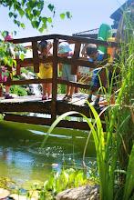 """Photo: dzieciaki """"polujące"""" na rybki"""