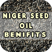 Niger Seed Oil Benefits