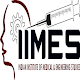 IIMES Download on Windows