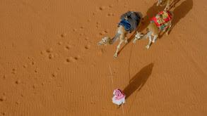 Desert of Wadi Rum thumbnail