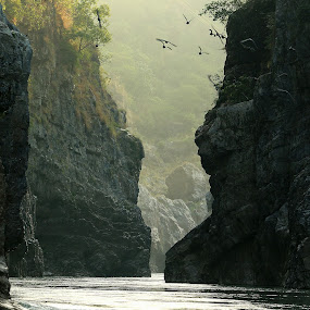 The River by Abhijit Chattopadhyay - Landscapes Waterscapes