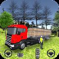 Truck Driver Cargo Transport