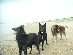 Photo: Ravi, Angel en Heiko aan het strand