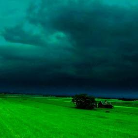 by Milos Krsmanovic - Landscapes Prairies, Meadows & Fields