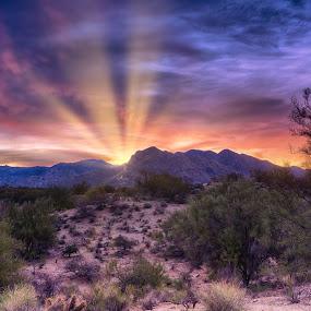 Mountain Dawn by Charlie Alolkoy - Landscapes Mountains & Hills ( desert, arizona, tucson, rays )