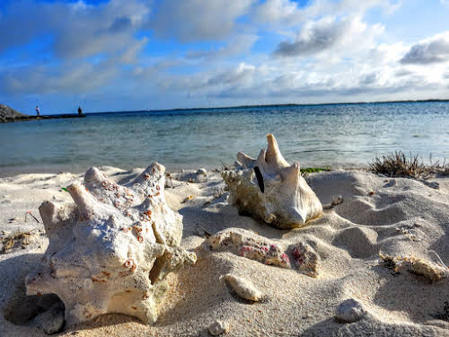 Bonaire. Washington Slagbaai National Park Hiking. Lake Bay and Conch