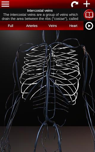 Circulatory System in 3D (Anatomy) 1.58 screenshots 11