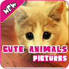 Photos d'animaux mignons APK