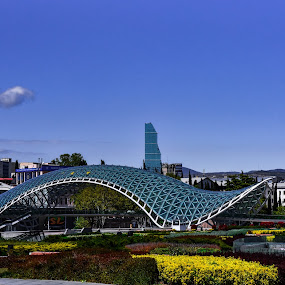 The bridge of peace  by Anto Boyadjian - Buildings & Architecture Bridges & Suspended Structures ( tbilisi, peace, georgia, architecture, bridge )