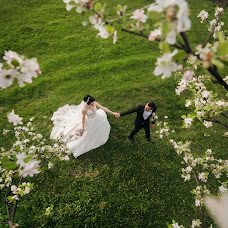 Wedding photographer Vasil Dochinec (Vasilij33). Photo of 13.06.2018