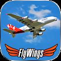 Flight Simulator Paris 2015 HD icon