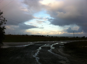 Photo: On the road, raining