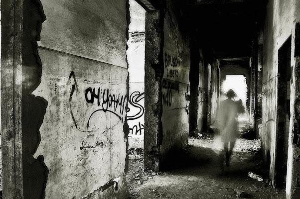 Ghost di miyomo