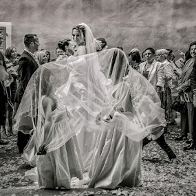 girls will be girls by Philippe Grosvald - Wedding Ceremony