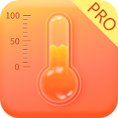 Thermometer & Hygrometer Pro