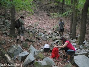 Photo: Účastníci exkurze při sběru na lokalitě Divoká rokle.