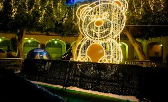 La Plaza Vieja estrena iluminación por la Navidad