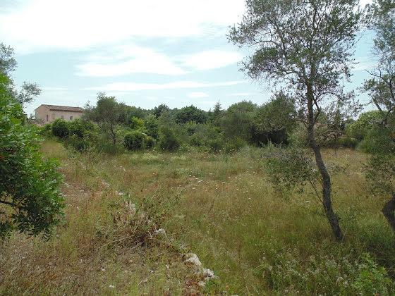 Vente terrain 2704 m2