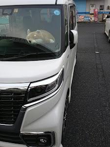 スペーシアカスタム MK53S ハイブリッドXSターボのカスタム事例画像 柴犬さんの2018年10月30日11:30の投稿
