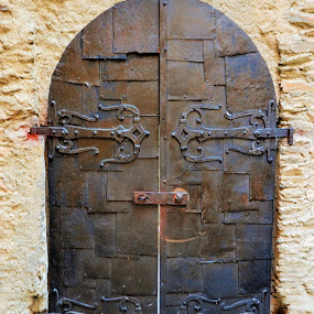 The old door in a castle by Svetlana Saenkova - Buildings & Architecture Architectural Detail ( door, historic, castle, old, germany, gate, carved, metallic,  )