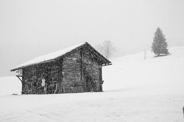 Snow storm di FilippoColombo