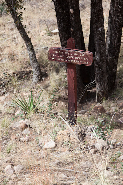 Photo: The beginning of the Ash Spring Trail, which is actually #247A, with #247 starting near the Herb Martyr Dam and renamed the Herb Martyr Trail