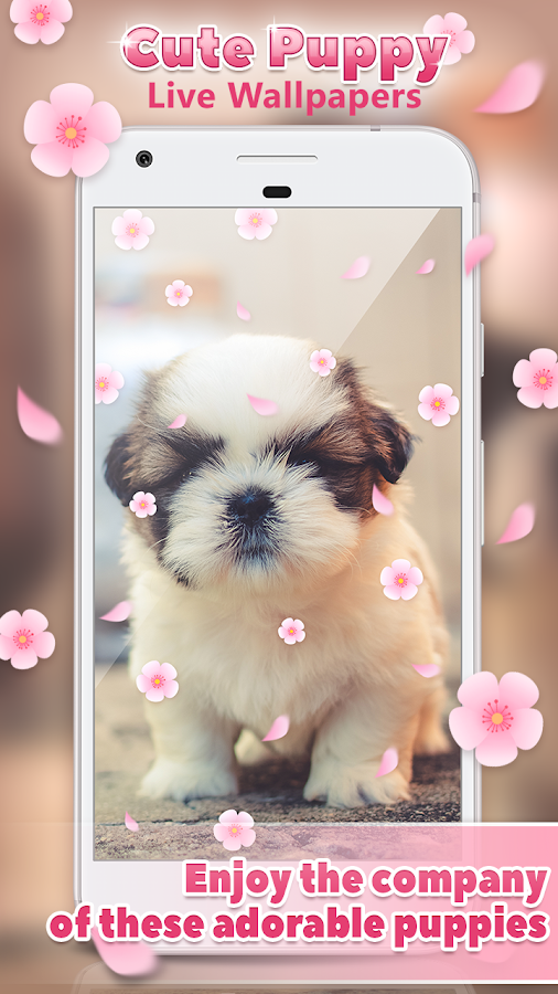 Cute Puppy Live Wallpapers 🐶- screenshot