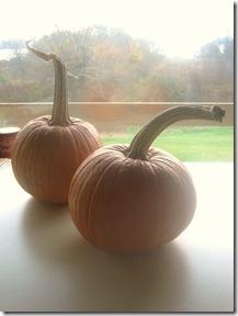 Pumpkins 3 v