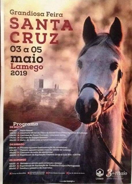 Lamego junta no próximo fim de semana a arte equestre e o mundo rural