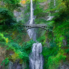 Dreamy Multnomah by William Kauffman - Landscapes Waterscapes ( columbia river, multnomah, waterfall, bridge, water )