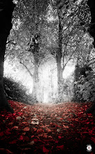 Photo: Come With Me  Down the rabbit hole To a land within my mind A fantasy within my soul Places lost upon the sane Places lost upon the mad With twisted boughs And fractured dreams Come with me Down the rabbit hole And stay awhile A lifetime to sleep