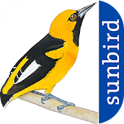 App Icon for All Birds Ecuador - A Sunbird Field Guide App in Czech Republic Google Play Store