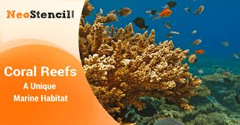 Coral Reefs : A Unique Marine Habitat