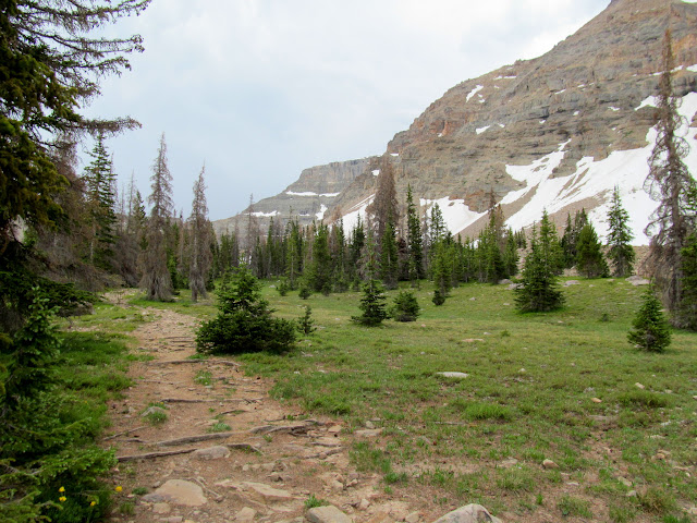 Trail to Amethyst Lake